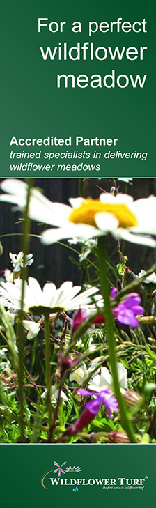 Blue Daisy are accredited partners of Wildflower Turf Ltd