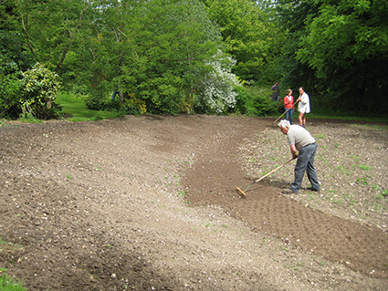 Preparing ground for laying wildflower turf